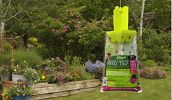 RESCUE japanese beetle traps